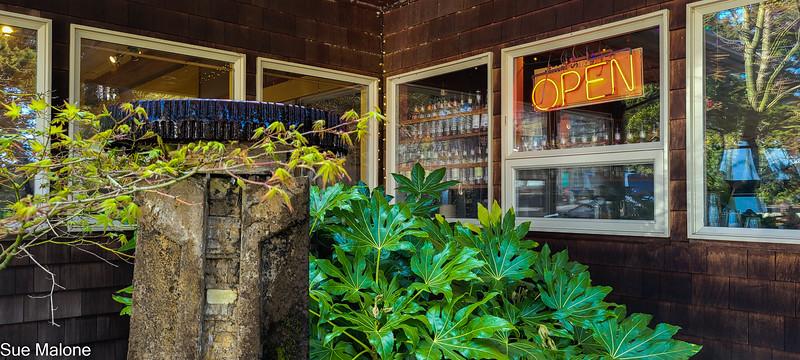 04-21-2021 Part 2 Manzanita Town-3.jpg
