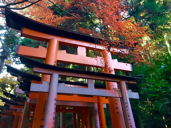 Fushimi Inari, 10,000 Gates