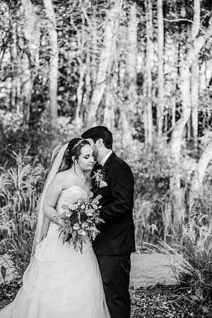 Bryan & Sam get married! 11-02-19