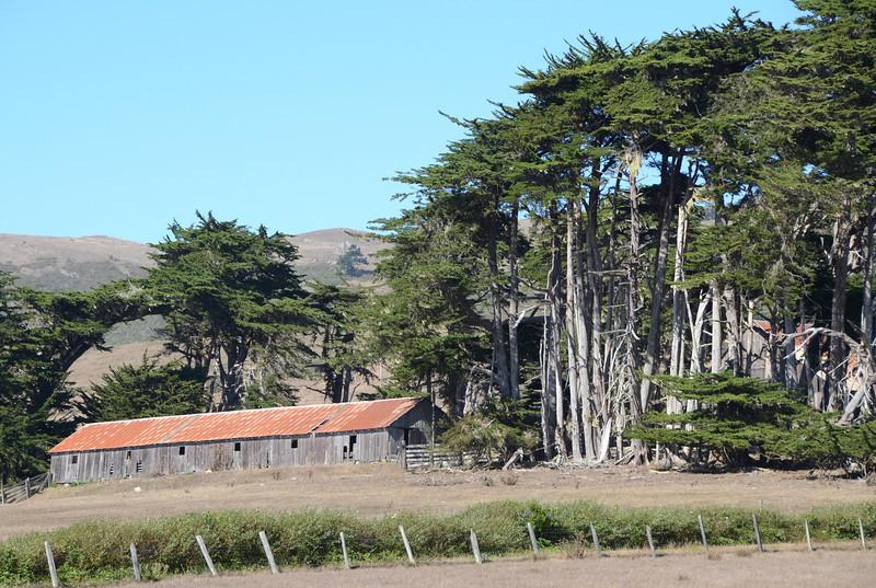 Barn & Cypress