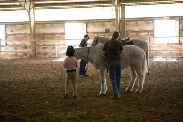 2008 Equestrian
