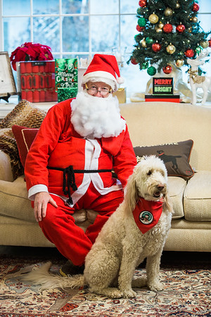 Claus for Paws