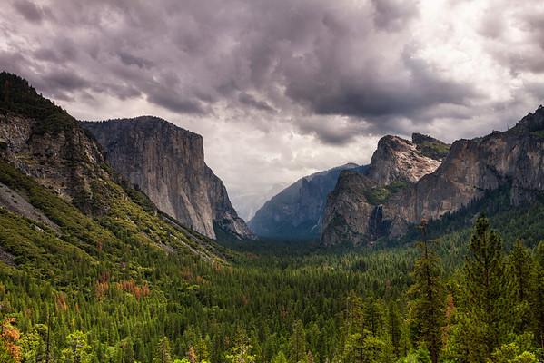 Yosemite Summer 2015