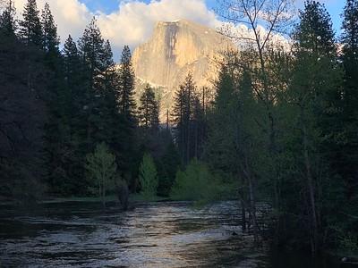 Yosemite 2019 Highlights