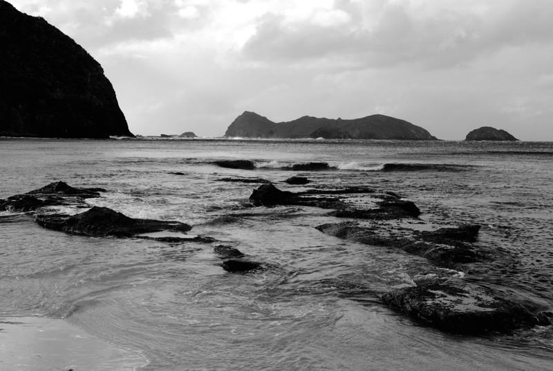 Lord Howe20080508 144839 b&w.jpg