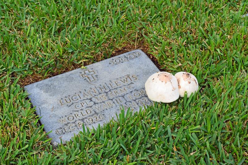 2018 Florida National Cemetery on Veterans Day (25).JPG