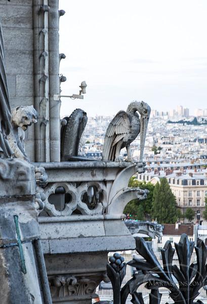 Notre Dame, Paris-27.jpg