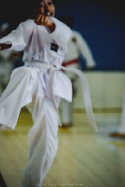 KICKSTARTER Taekwondo 02152020 0135.jpg