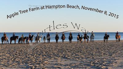 Apple Tree Farm Hampton Beach 11-08-2015