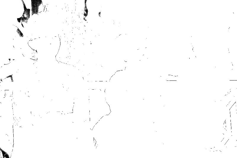 DSC05484.png