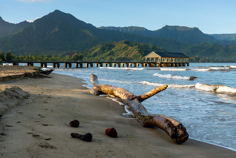 Kauai 2020-18.jpg