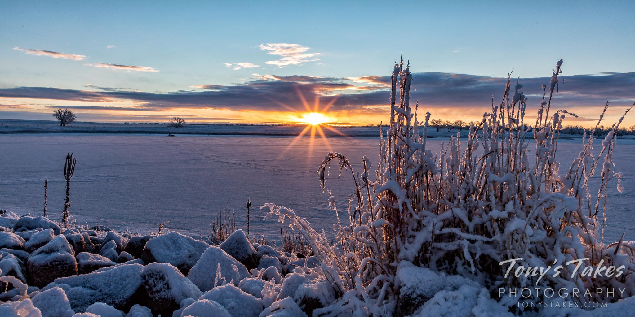 Winter's starburst across a frozen pond