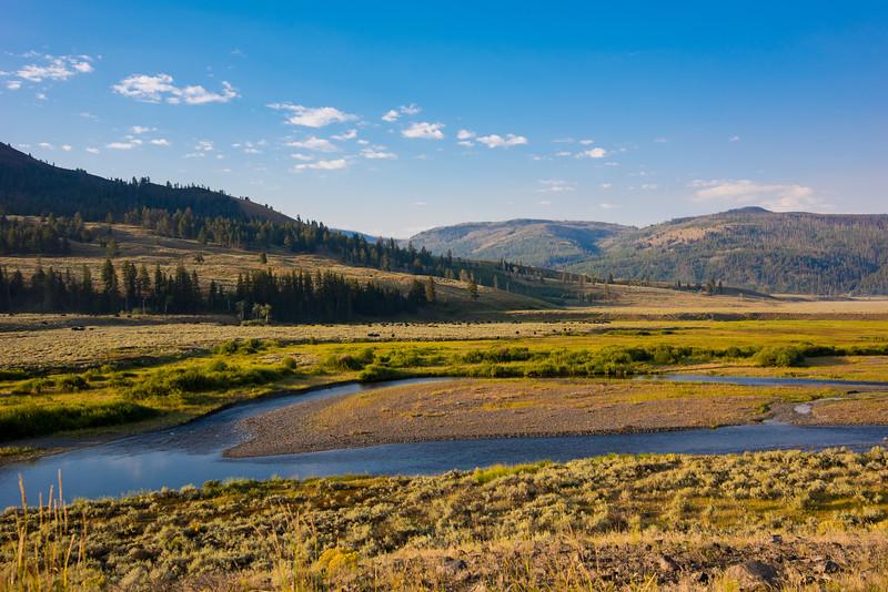 Yellowstone Day 2 R-5128.jpg