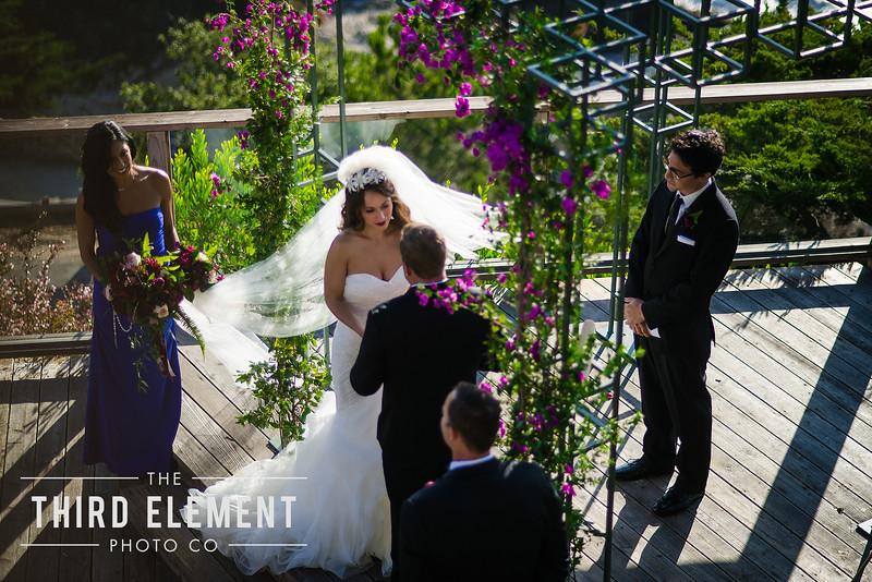 Third Element Photo Co Lina + Rett Carmel Bay Area Wedding Photographer_0032.jpg
