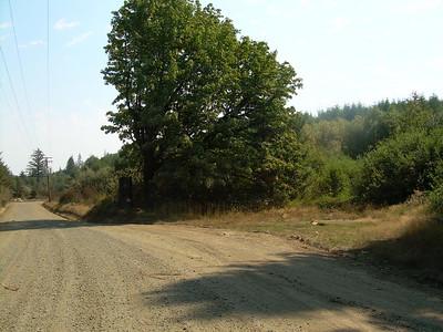 Luckiamute River Trail