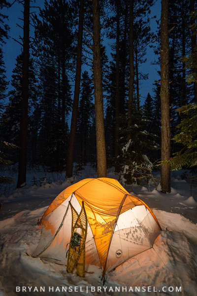 Winter Camping in the Pine