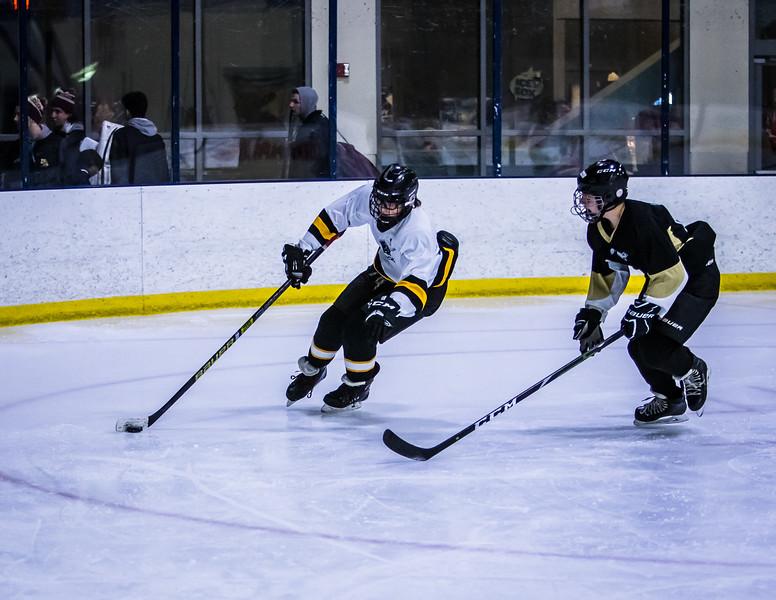Bruins-72.jpg