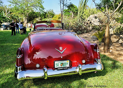 2014 Fairchild Tropical Gardens Car Show