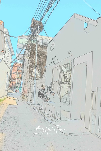 DSC_8456.jpg