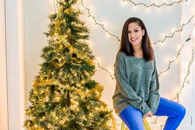 Jeni Christmas Mini