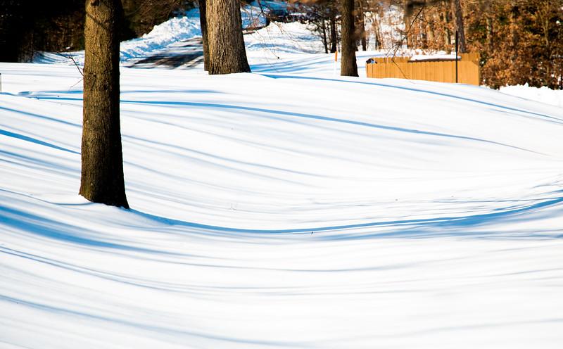 Snow_20160124_31.jpg