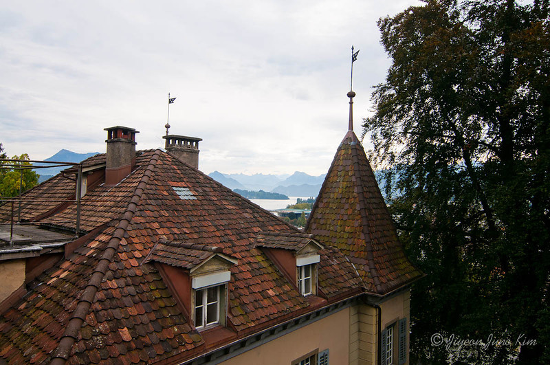 Lucern