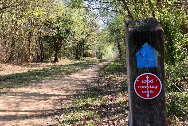 Going from Battle to Three Oaks along the 1066 Country Walk
