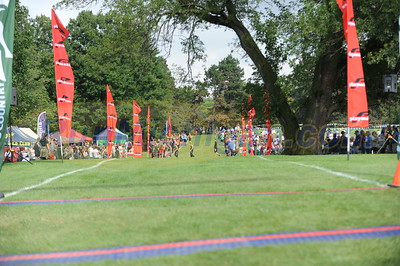 Women's College Finish - 2015 MSU Spartan XC Invite
