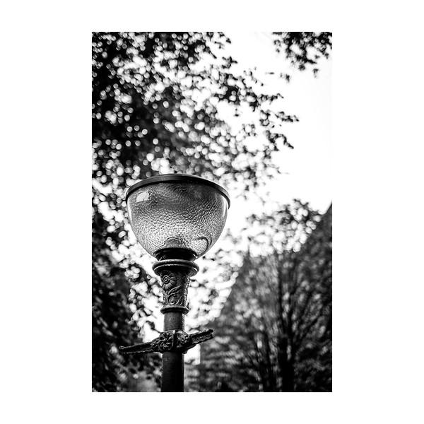 256_Lamppost_10x10.jpg