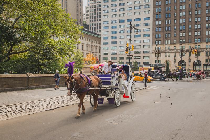 Central Park Wedding - Maya & Samanta (9).jpg