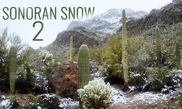 Sonoran Snow 2 Short Film in 4K