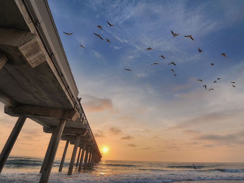 La Jolla July 30th Sunset at Scripps Pier with flying birds and a loan surfer.