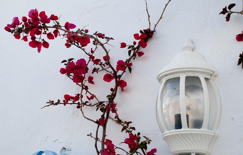 Santorini-126.jpg