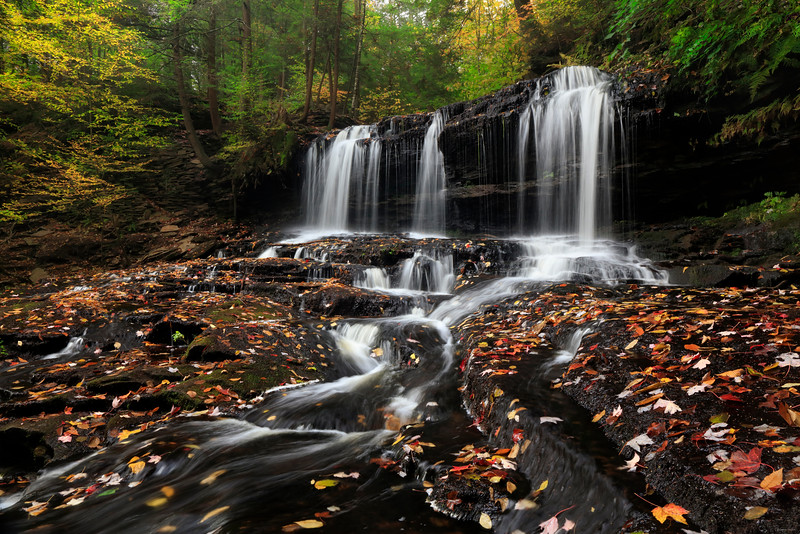 Ricketts Glen, PA