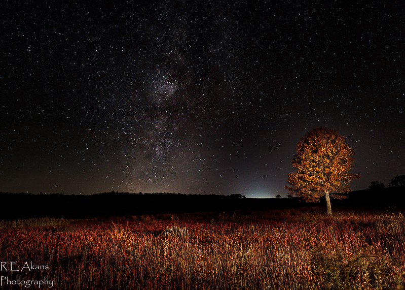 Big Meadows Milky Way 7015 B (1 of 1).jpg
