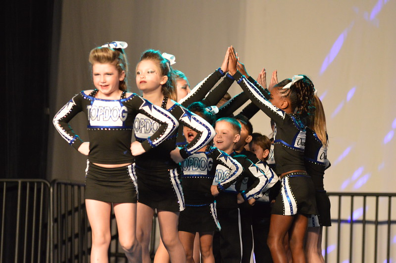 cheer comp dolphin 3.1.14 325.JPG