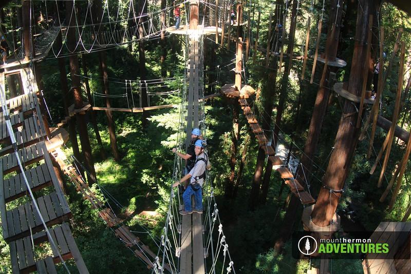sequoiaportrait_1473446844635.jpg