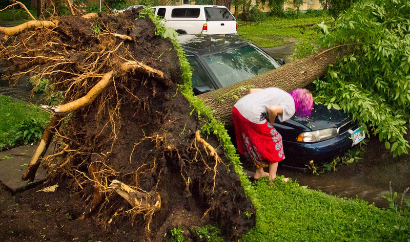 . A passerby inspect what\'s left of a car crushed by a tree in in South Minneapolis. Photo: Ryan Coleman
