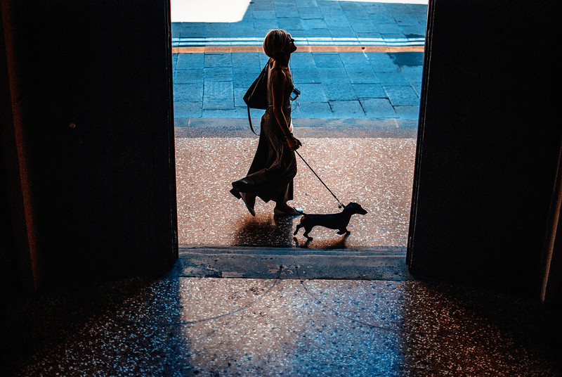 woman walking dog dooryway cross vsco kodak portra 400 uc.jpg