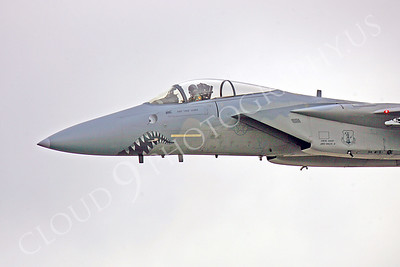 Sharkmouth McDonnell Douglas F-15 Eagle Airplane Pictures