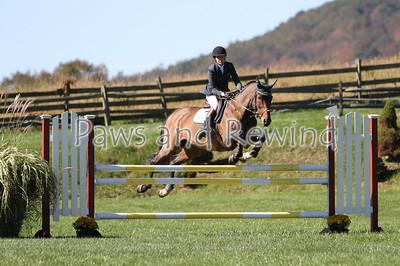 Saturday: $500 Junior/Amateur Jumper Derby