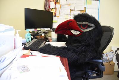 Rocky Raven, Advancement Office 5-30-19