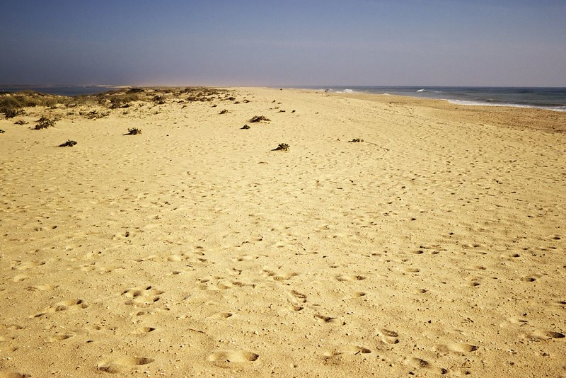 Jak říkám, jsme tu na sáhodlouhé pláži prakticky sami. Úžasné místo, úžasný pocit.