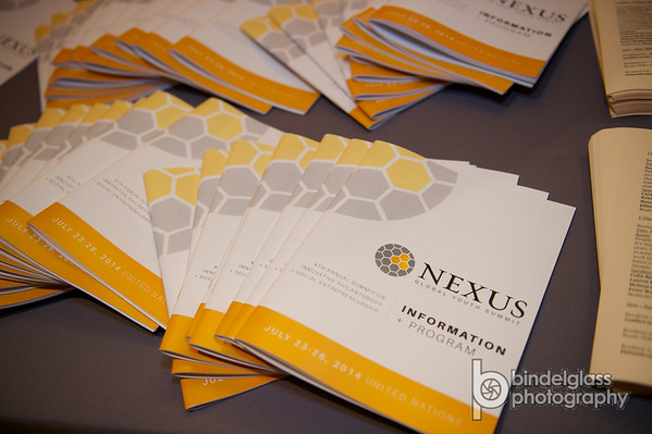 Nexus Global Youth Summit 2014