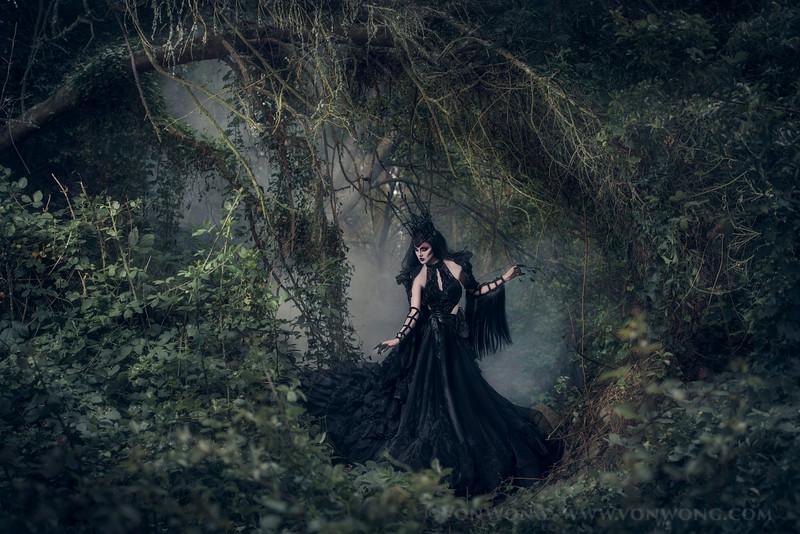 secret.forest-229-Edit.jpg