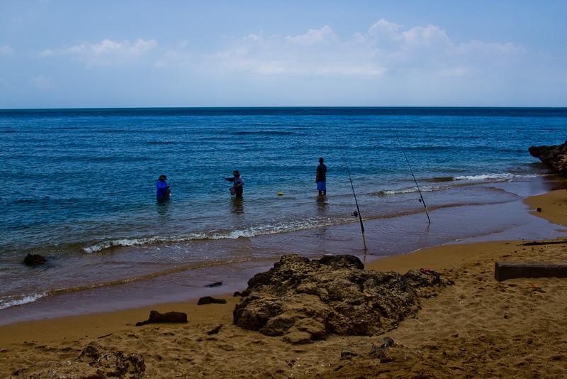 Journey into Oahu Photograph 139
