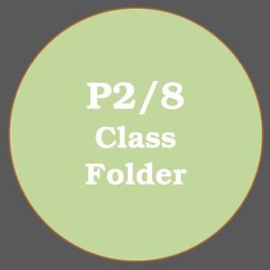 P2/8 ACTIVITIES
