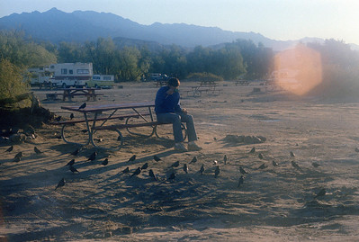 1981 Death Valley