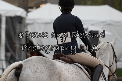 Pre-Children's  Equitation -Horses