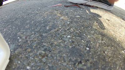 Hawthorne Reservoir Roof Overflight